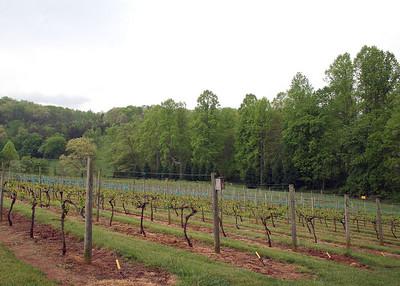 5/3/08 - Crane Creek Vineyard