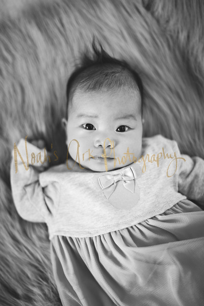 Victoria | 3 months