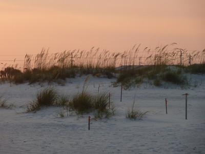 2011 July Gulf Shores, AL
