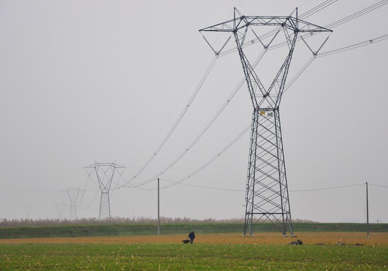 Power lines - Albareto, Modena, Italy - January 26, 2009