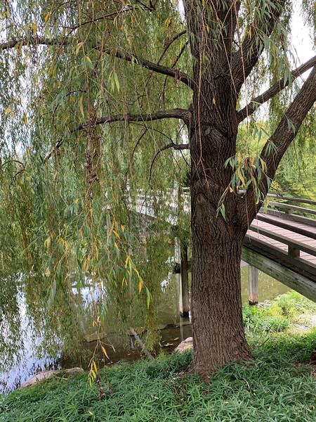 Chicago Botanic Garden 130.jpg