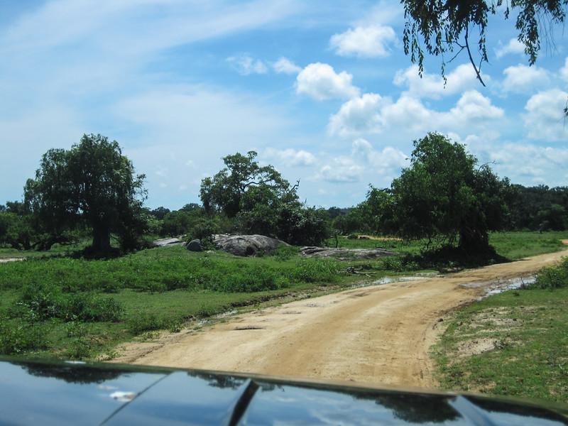 Sri_Lanka17-9828.jpg