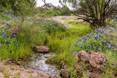Small river stream along a Texas country road