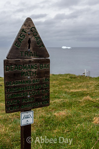 Deadman's Bay Path