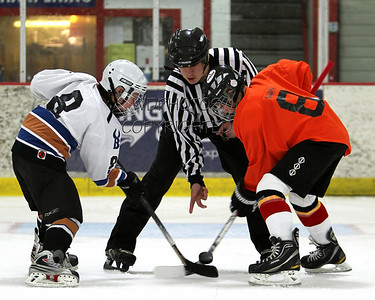 2011 BSSG Ice Hockey