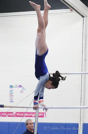 2018 MHS Gymnastics