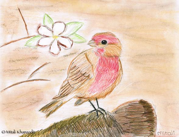 Mitali's Sketches
