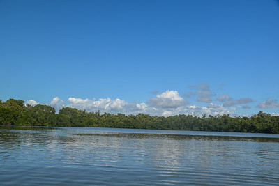 1230PM Heart of Rookery Bay Kayak Tour - Howe