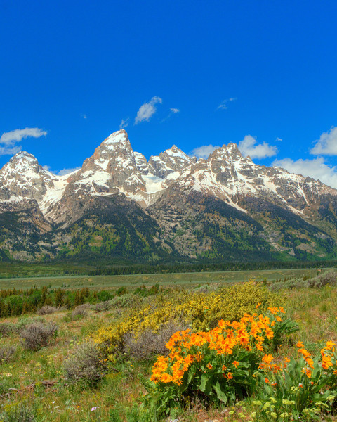 Grand Tetons  Rocky Mountains