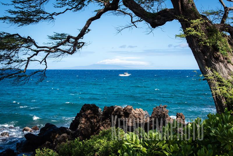 Maui2016-070.jpg