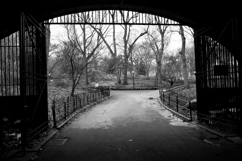 Black and White Gate in Central Park
