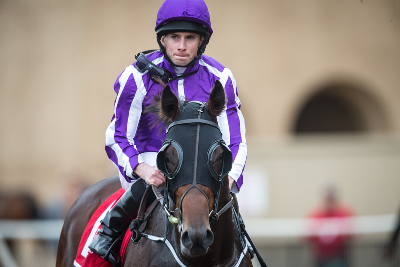 Mendelssohn (Scat Daddy) wins the BC Juvenile Turf at Del Mar on 11.3.2017. Ryan Moore up, Aiden O'Brien trainer Derrick Smith Mrs. John Magnier and Michael Tabor.