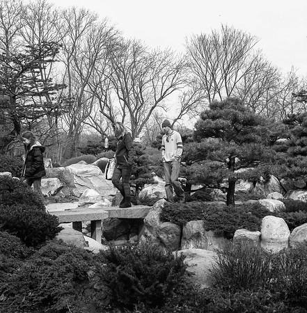 Yashica R_6 Como Park 3-20-17