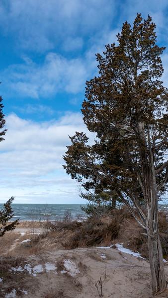Ontario-Grand-Bend-Pinery-Provincial-Park-35.jpg