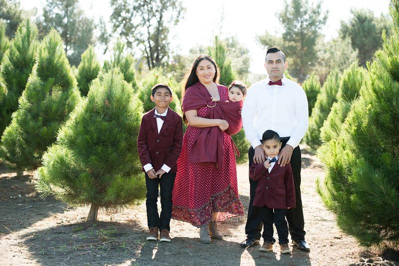 Nunez Family Holidays 2017