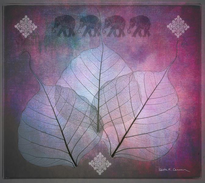 Three-Bodhi-leaves-four-elephants.jpg