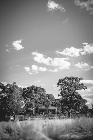 Photocamp 2013
