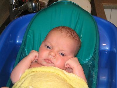 Amelias First Weeks