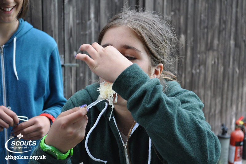 *** No Scouts were harmed in this Taste Test Challenge ***