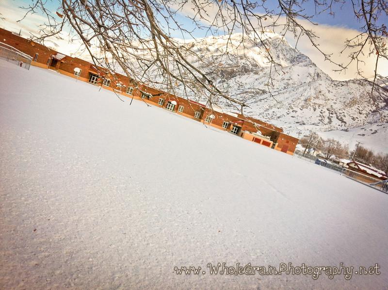 20120122_Winter_0004.jpg