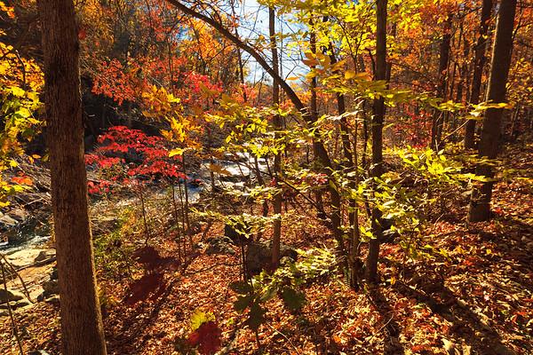 Fairfax, Difficult Run Stream Valley Park