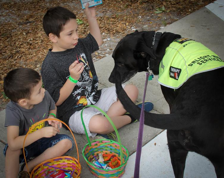 DrLight Therapy Dog,  Loves Kids  brings Joy,  Easter Egg Hunt,  Hospice,  3 24 2018