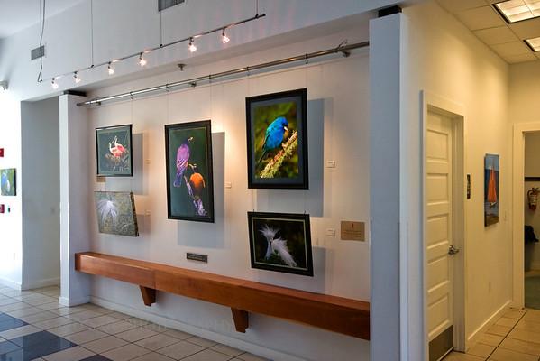 Adele Grage Exhibit, April 2011