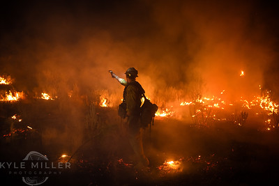 Best of  Wildfire