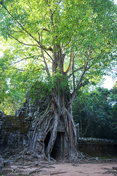 Cambodia-2018-8785.jpg
