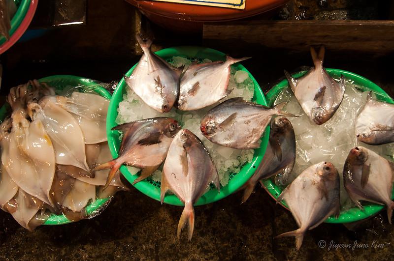 Fish at Jagalchi Sijang