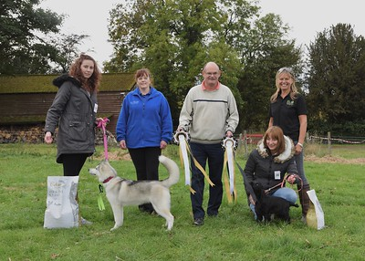 Carnfield Hall Fun Day - Dog Show