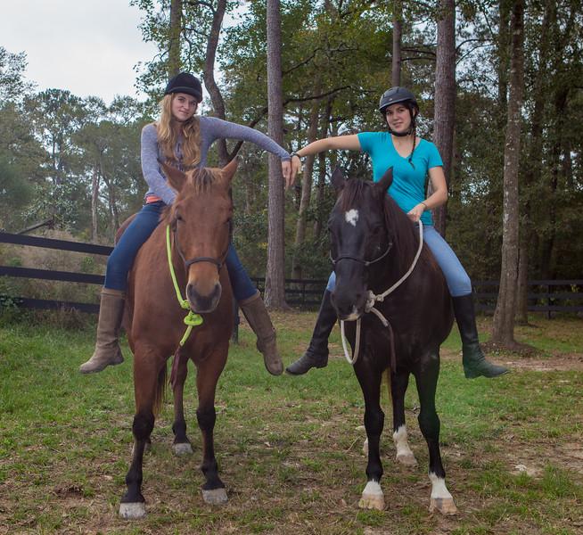 horses & staff-309.jpg