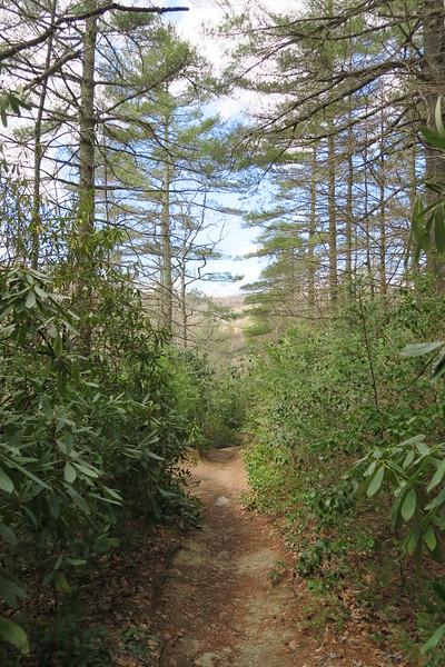 Deep Gap Trail - 3,700'
