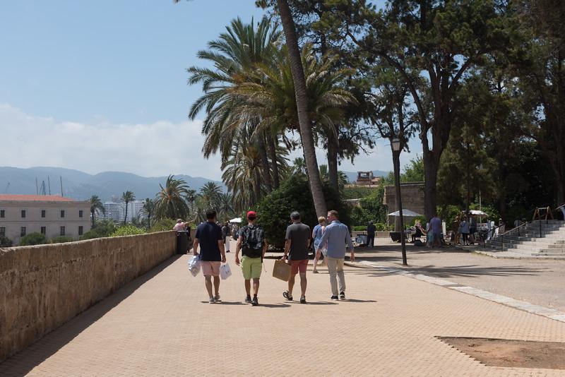 Palma 045.jpg