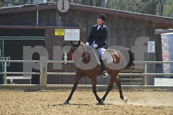 HA AA SH Under Saddle - AOTR