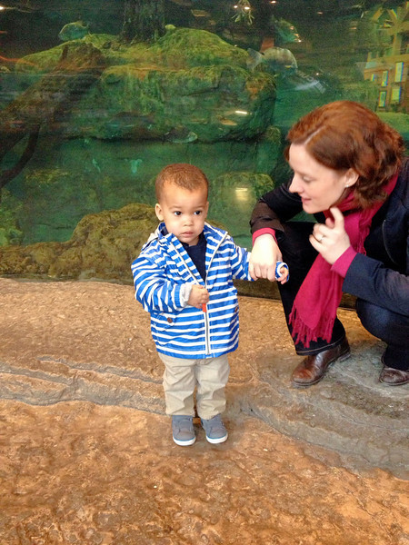 Looking at the fish at Outdoor World
