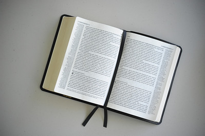 Bible pics