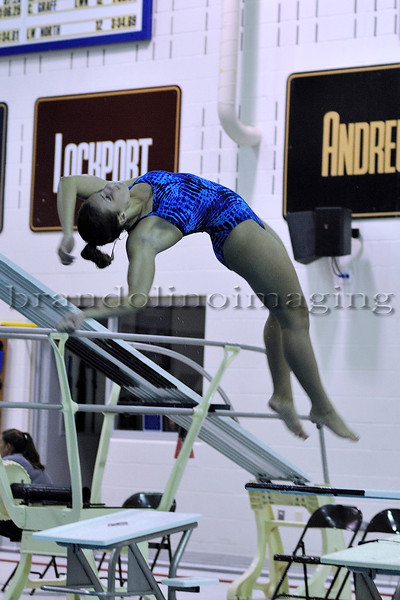 Lincoln-Way East Girls Diving (2013)