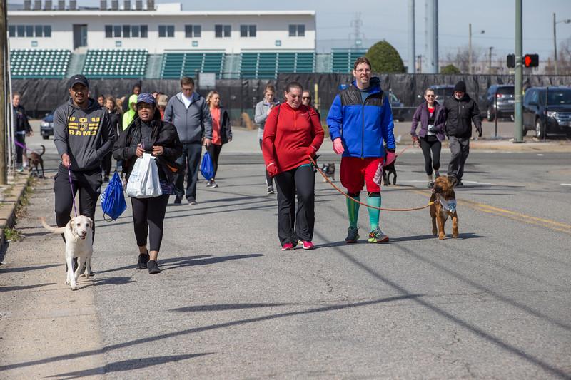 Richmond Spca Dog Jog 2018-735.jpg