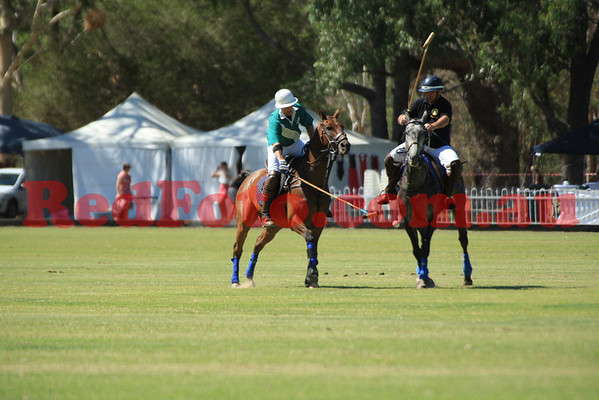 Perth Polo Festival