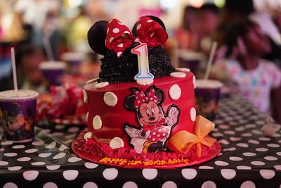 Alena Birthday Party
