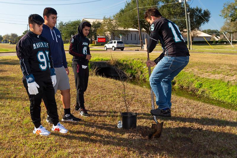 Tree Planting_Crenshaw_Preston__2020_041.jpg