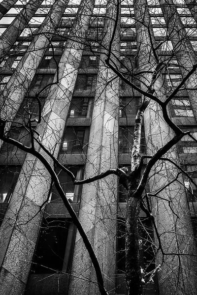 53rd Street, NYC