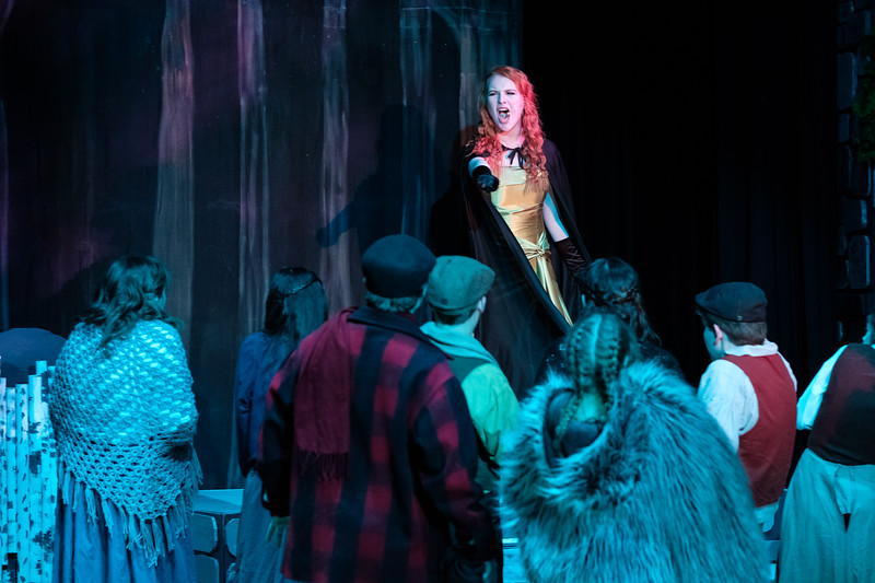2018-03 Into the Woods Performance 0851.jpg