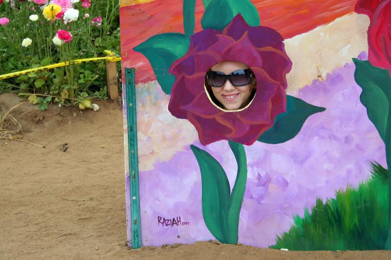 San Diego Sagas: Carlsbad -- The Flower Fields