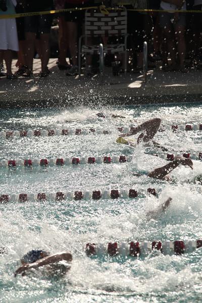 Flying Sharks Finals_071013_0002.JPG