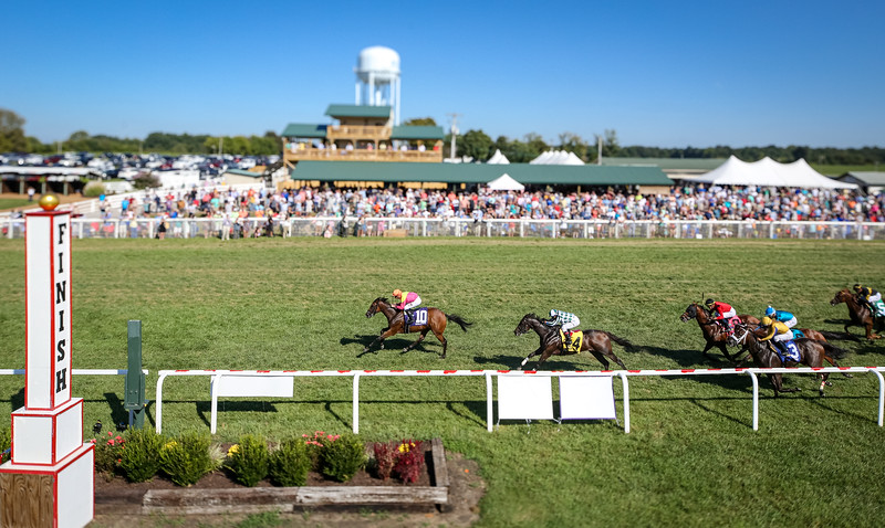 """Totally Boss (Street Boss) wins the Runhappy Turf Sprint (G3) a """"Win and You're In"""" Breeder Cup Challenge race. Florent Geroux up, Rusty Arnold trainer, Susan and Jim Hill owners."""