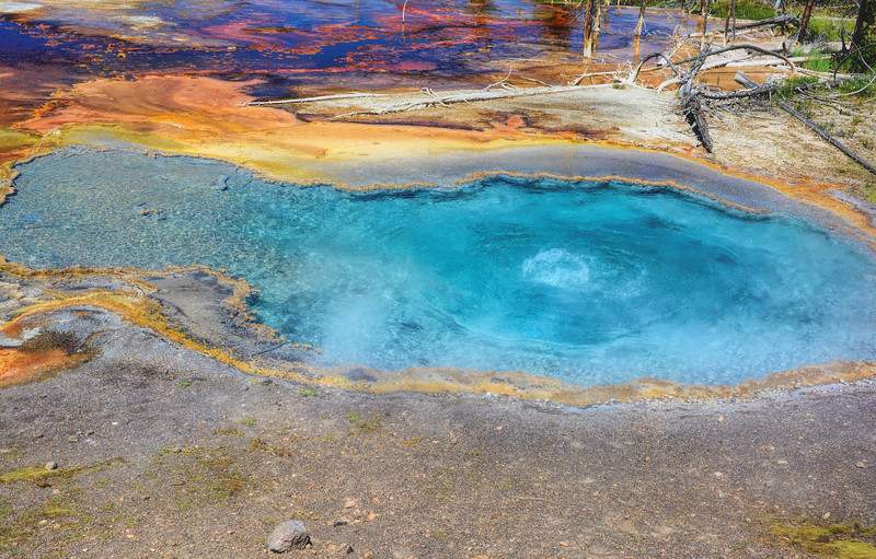 D71_0843 E-Colors of Yellowstone.jpg