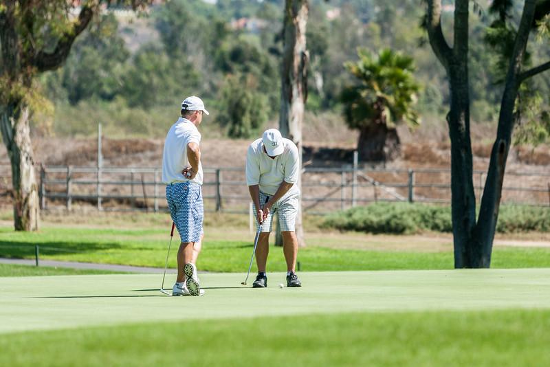 Golf241.jpg
