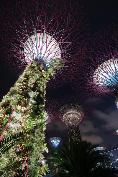 1802_singapore_053.jpg